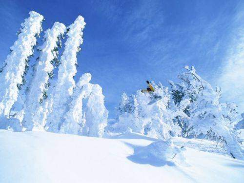 CHAMPAGNE POWDER - Jackson Hole - 2012